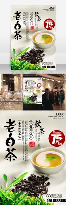 老白茶中国茶文化海报