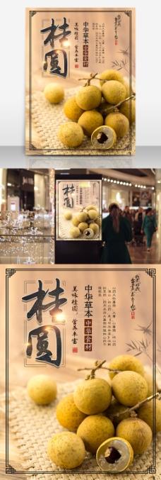 桂圆龙眼中华美食中国风传统宣传海报