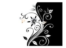 彩绘花黑白花纹