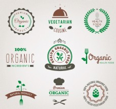 绿色食物图标矢量元素