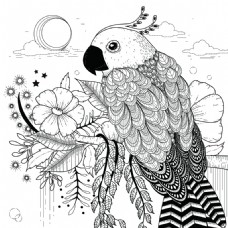 创意卡通鹦鹉动物头像矢量素材
