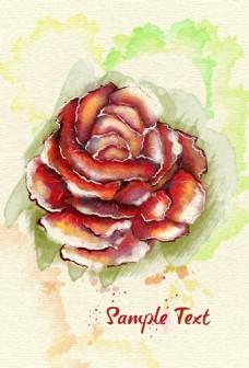 唯美水彩绘玫瑰花