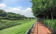 深圳东湖公园