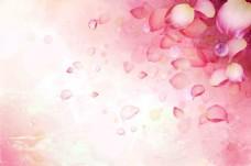手绘花瓣粉色背景墙