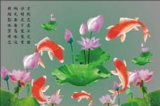 锦鲤荷花图