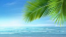 海边风景视频