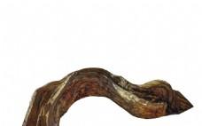 手绘枯木纹理元素