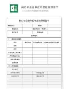 民办非企业单位年度检查报告excel表格