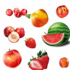 油桃 草莓 西瓜 李子