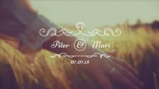 30个浪漫婚礼文字标题动画