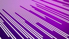 紫色背景的线条与LOGO的展示模版
