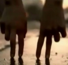 配音版手指浪漫爱情婚庆片头模版