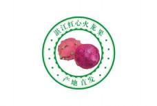 火龙果标签