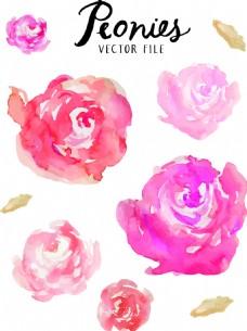 红色水彩绘玫瑰花插画