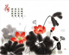 中国画荷花