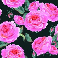 牡丹花朵纹理图案矢量背景