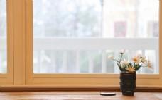 简约窗台小雏菊背景
