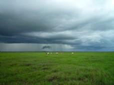 大气天空田野背景