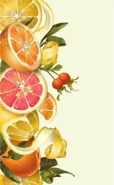 手绘水果橙子柠檬蜂蜜矢量背景素材