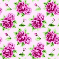 粉红色玫瑰花蕾丝矢量背景