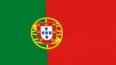 旗帜元素视频背景