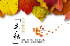 立秋节日海报设计