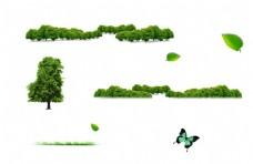 手绘森林小树元素