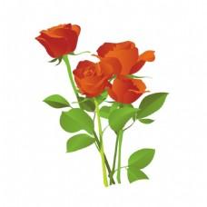 唯美红色玫瑰花png免扣元素