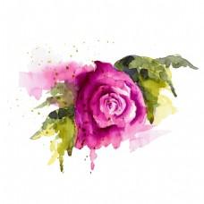 创意水彩绘玫瑰花