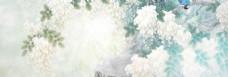 白色花朵banner背景