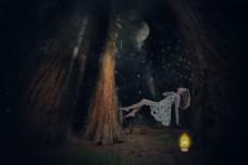 森林里的沉睡精灵