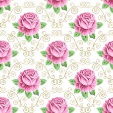 花边玫瑰花蕾丝矢量背景