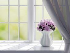 简约白色飘窗花朵背景
