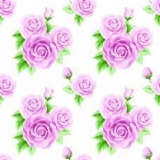粉色玫瑰花蕾丝矢量背景