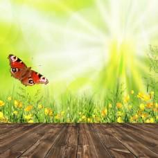 梦幻木板蝴蝶背景