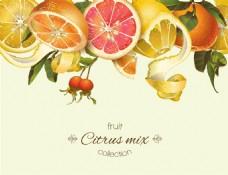 橙子柠檬柠檬蜂蜜矢量背景素材