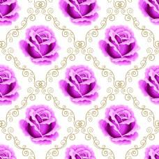 紫色玫瑰花蕾丝矢量背景