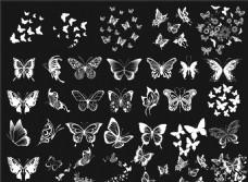 蝴蝶剪影 多个蝴蝶