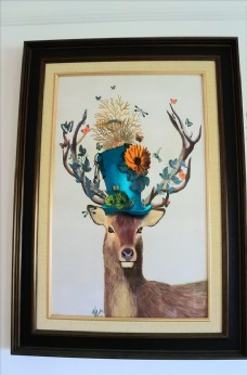 戴帽子的鹿