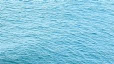 蓝色大海视频