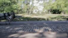 公园视频素材设计