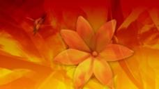 抽象花瓣蝴蝶视频背景