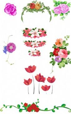 免抠图花朵素材