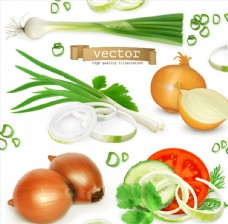 多种切开的蔬菜矢量素材