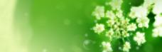 绿色花朵电商banner背景