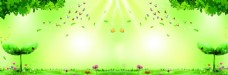 绿色草地光斑banner背景