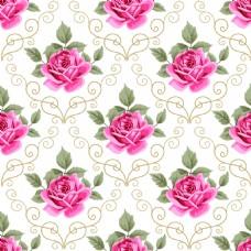 唯美红色玫瑰花蕾丝矢量背景