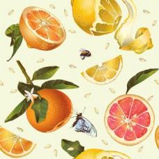 水彩橙子柠檬蜂蜜矢量背景素材