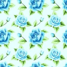 蓝色玫瑰花蕾丝矢量背景