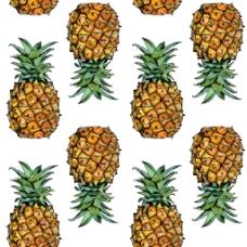 水彩水果菠萝背景